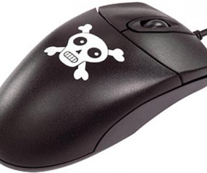 Souris pirate