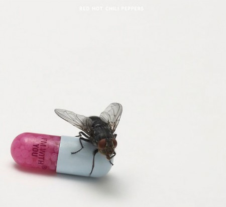 Red Hot Chili Peppers - Im with you