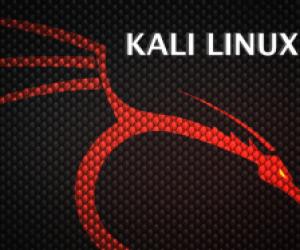Kali Linux (Backtrack)