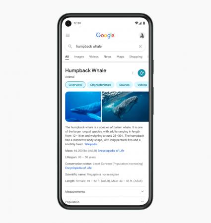 Google repense l'experience mobile utilisateur en 2021